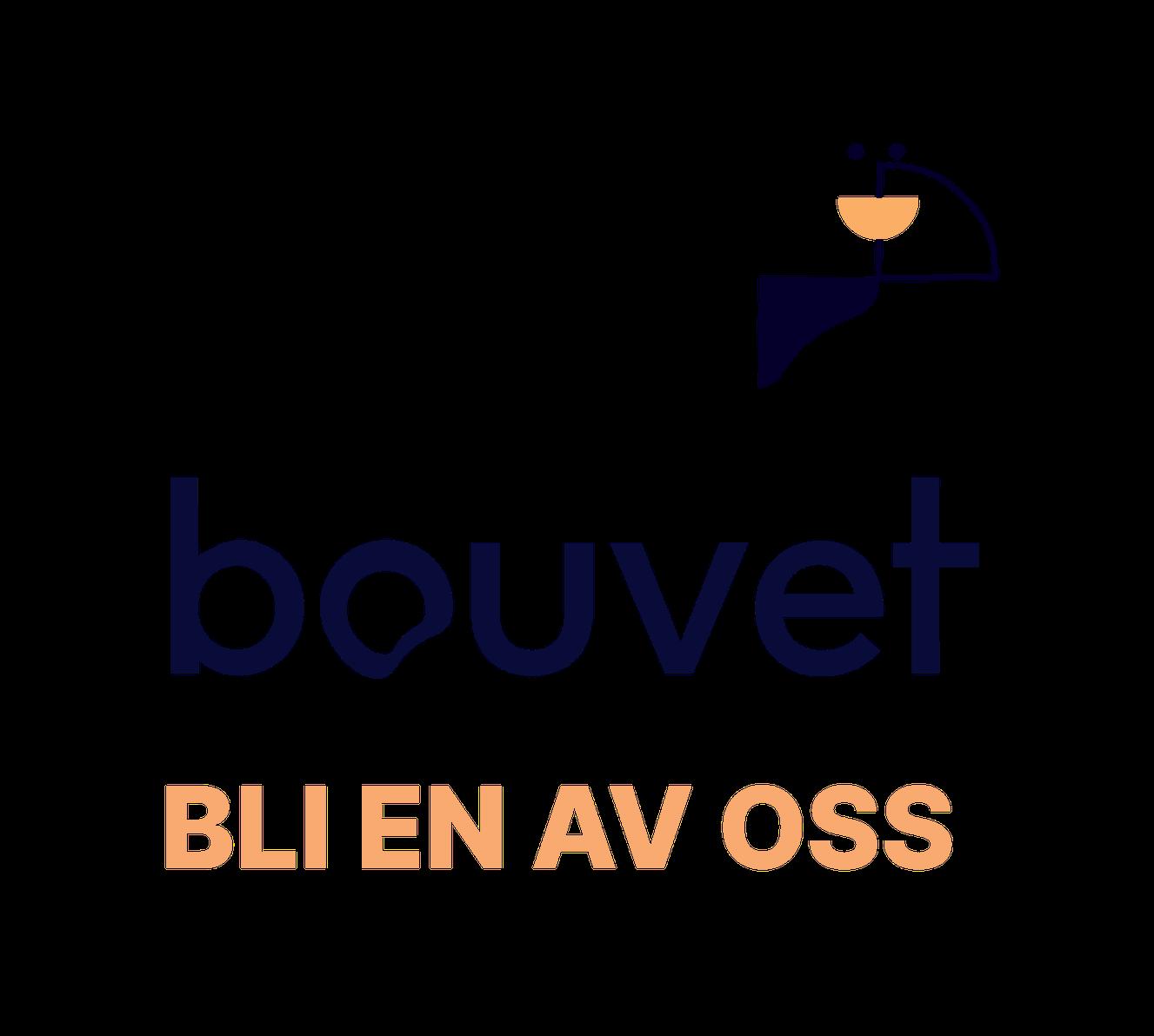 Bouvet Norge AS logo